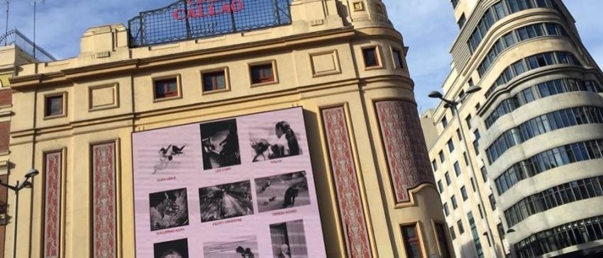 Fotografía: La obra se exhibió en la madrileña Plaza de Callao, en la semana del voluntariado.
