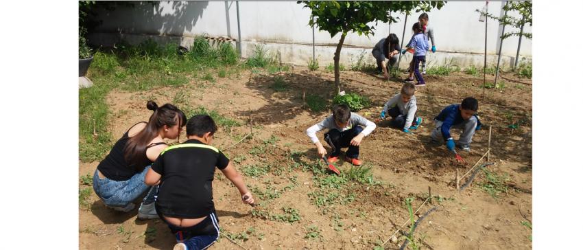 Alumnos del CEIP Esperanza Aponte de San Juan de Aznalfarache (Sevilla), realizan una actividad de huerto en el marco del programa de